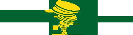 Lemonstorm Logo
